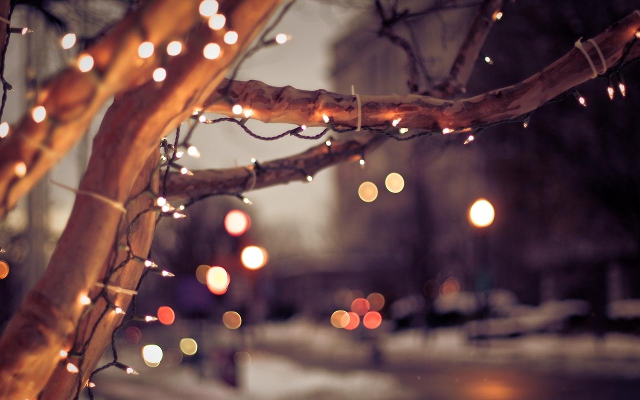 Christmas-Lights-Tumblr-Snow-09
