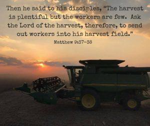 HarvestPlenty